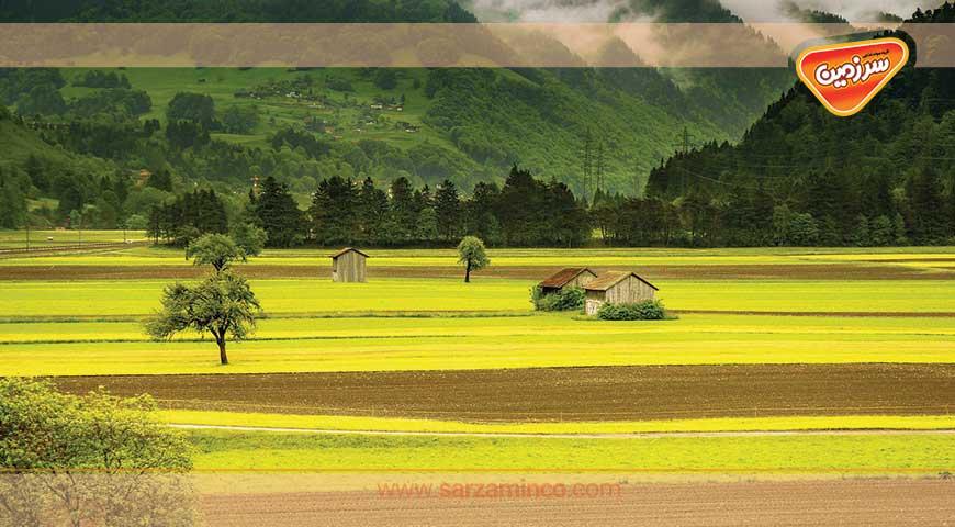 تراس های برنجی