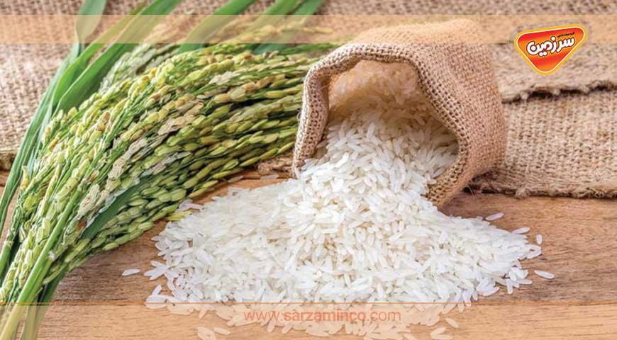 درمان با برنج